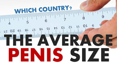 What is the average penis size in the united states?