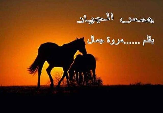 رواية همس الجياد بقلم مروة جمال