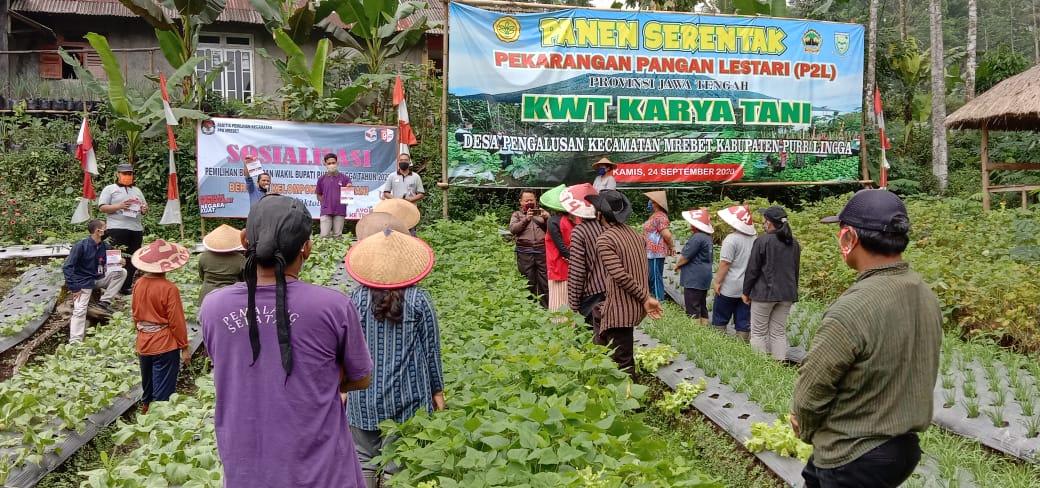 Giliran Petani Ikuti Sosialisasi Oleh KPU Purbalingga