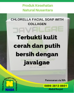 CHLORELLA FACIAL SOAP WITH COLLAGEN