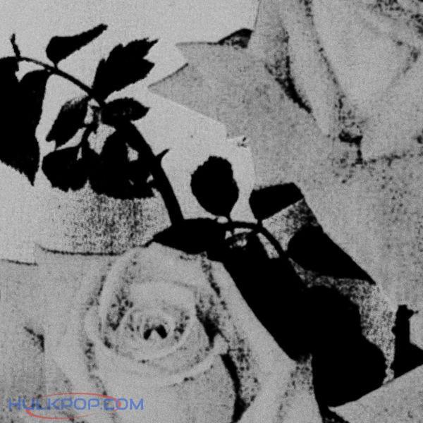 Ashmute – Rose – Single