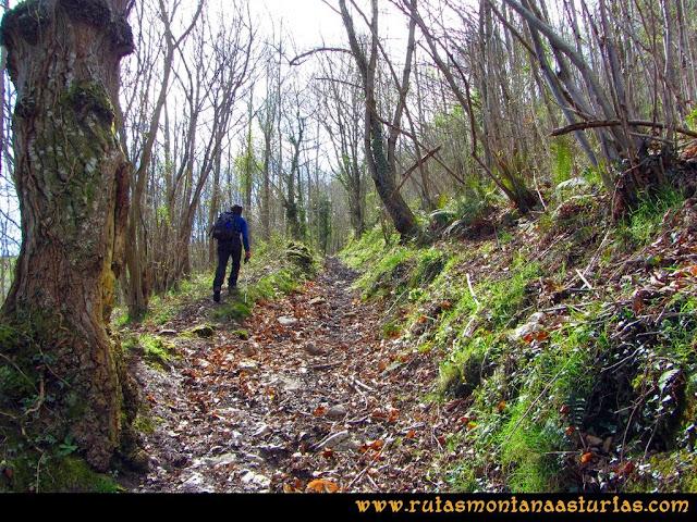 Ruta al Pico Gorrión: entre Vichaoriche y Toriezo