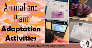 Read and learn about different ideas to incorporate in your classroom about animal and plant adaptations!