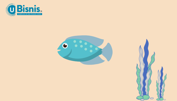Peluang Bisnis Ikan Hias yang Menguntungkan