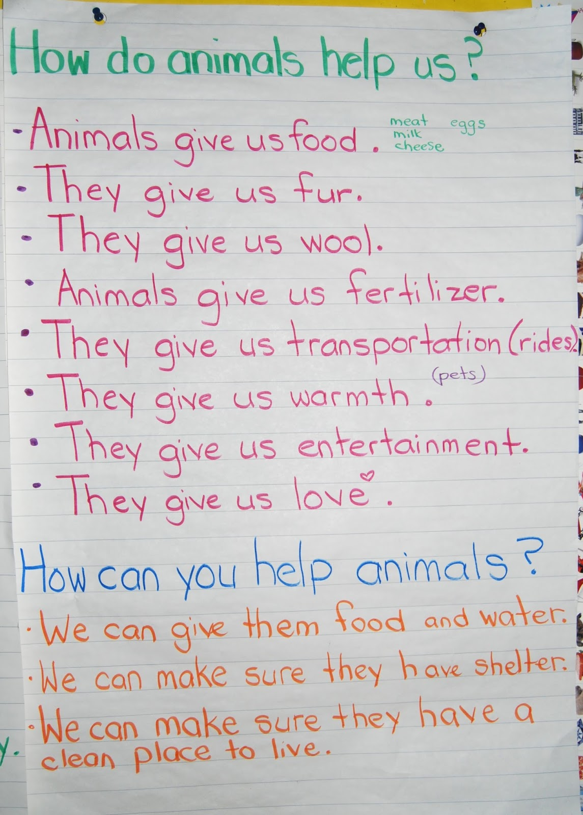 Ms. Brown's Classroom: Needs Of Living Things