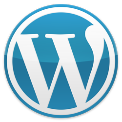 widgets every wordpress website should have