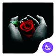 Rose APUS Launcher theme