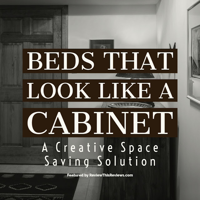 Beds that Look Like Cabinets