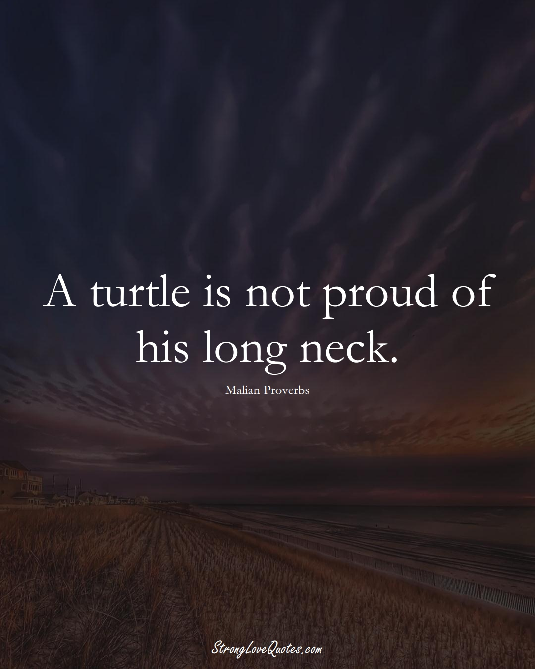 A turtle is not proud of his long neck. (Malian Sayings);  #AfricanSayings