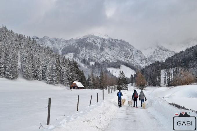 Przez śnieg do Klinkehütte