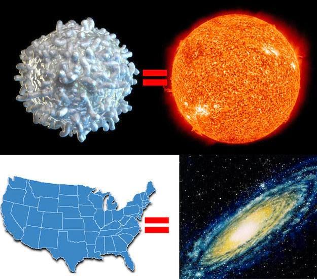 Jika matahari kita kecilkan luasnya sebesar sel darah putih