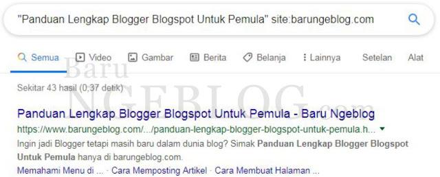 Cara Cek Artikel Blog Sudah Terindex Google atau Belum