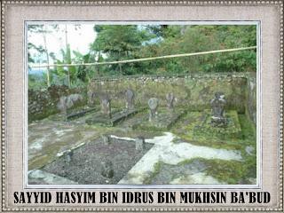 Sayyid Hasyim bin Idrus bin Muhsin Ba'abud - Abad 16 M, Islam Masuk Wonosobo