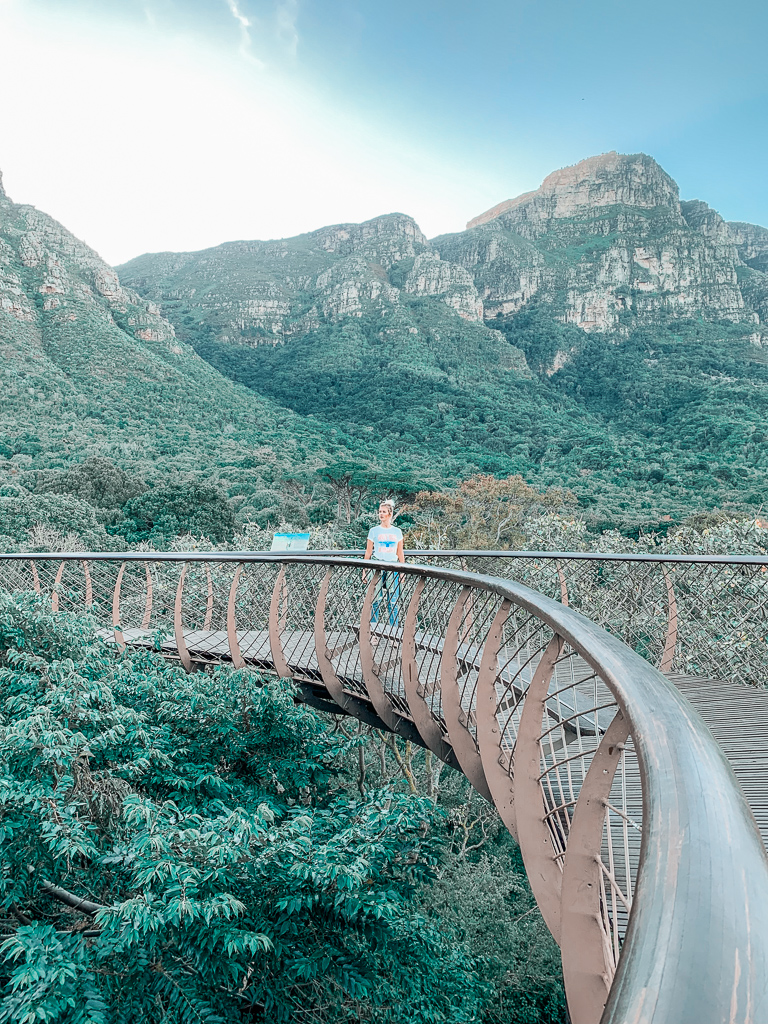 boomslang bridge