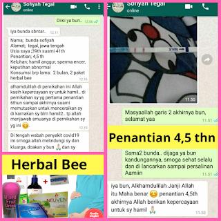 promil herbal bee