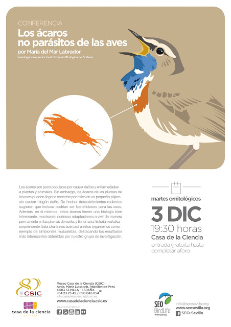 Conferencia: Los ácaros no parásitos de las aves. Por María del Mar Labrador, 3 de Diciembre 2019. Grupo Local SEO-Sevilla.