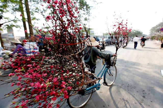 Tet market - VietNam's Essence 2