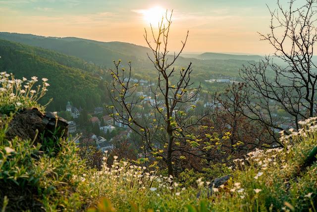 Sonnenuntergang am kleinen Burgberg  Wandern in Bad Harzburg  Wanderung Harz  Kurpark und Burgberg Bad Harzburg 12