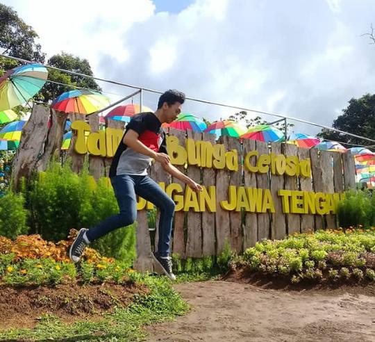Keindahan Taman Bunga Celosia Wisata Hits Bandungan Semarang