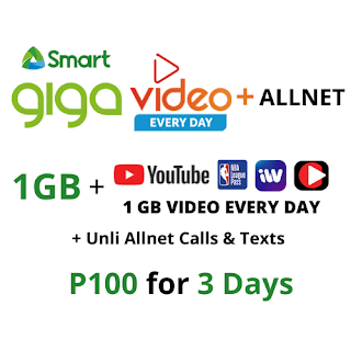 Smart GIGA VIDEO+ ALLNET 100