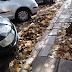Ιωάννινα:Φύλλα φθινοπώρου... ευκαιρία ή πρόβλημα;