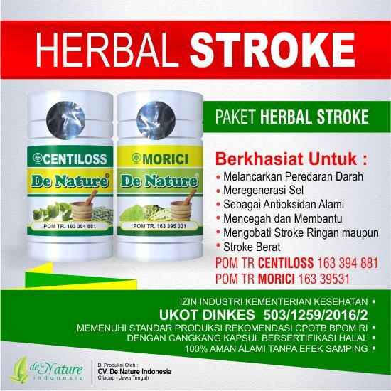 Obat Alami Atasi Stroke