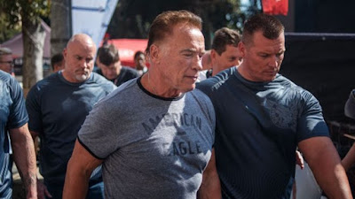 Arnold Schwarzenegger Attacked in South Africa Check Out Complete News
