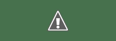 """Maintenant, nous avons quelques options de personnalisation pour travailler avec. Toujours dans la section """"Personnalisation"""", vous avez une sous-section « Arrière-plan » où vous pouvez choisir entre « Google Photos » et « Galerie d'art »."""