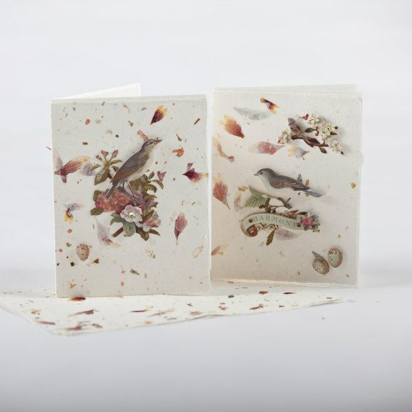 petal paper used to make two greeting cards