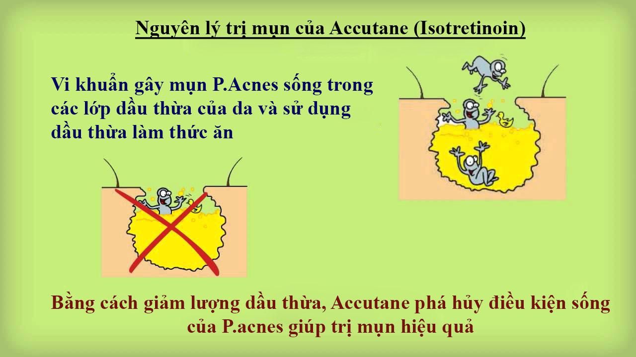 Nguyên lý trị mụn của Accutane (Isotretinoin)