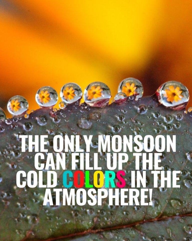 Monsoon Quotes, Happy Monsoon Quotes