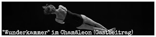 http://www.mondgras.de/sari02/index.php/2015/10/02/gastartikel-cirkusfeeling-im-chamaeleon-verlosung/