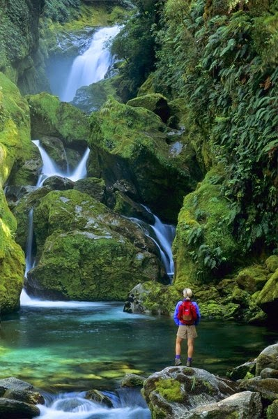 Fiordland National Park New Zealand Incredible Pics