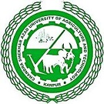 Recruitment at C.S. Azad University of Agriculture & Technology, Kanpur for Librarian Last Date 12 August 2019