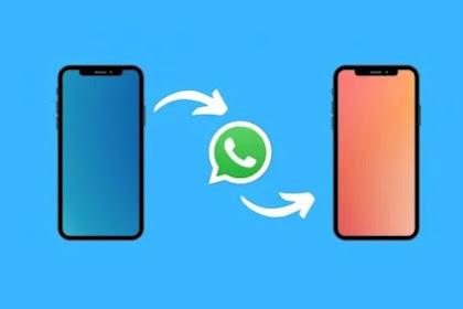 Cara Backup & Restore Data Chat Akun WhatsApp ke HP Baru Tanpa Ribet