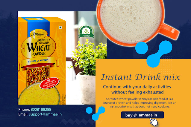 Sprouted Wheat Powder | Multigrain Porridge Mix - Ammae Foods India