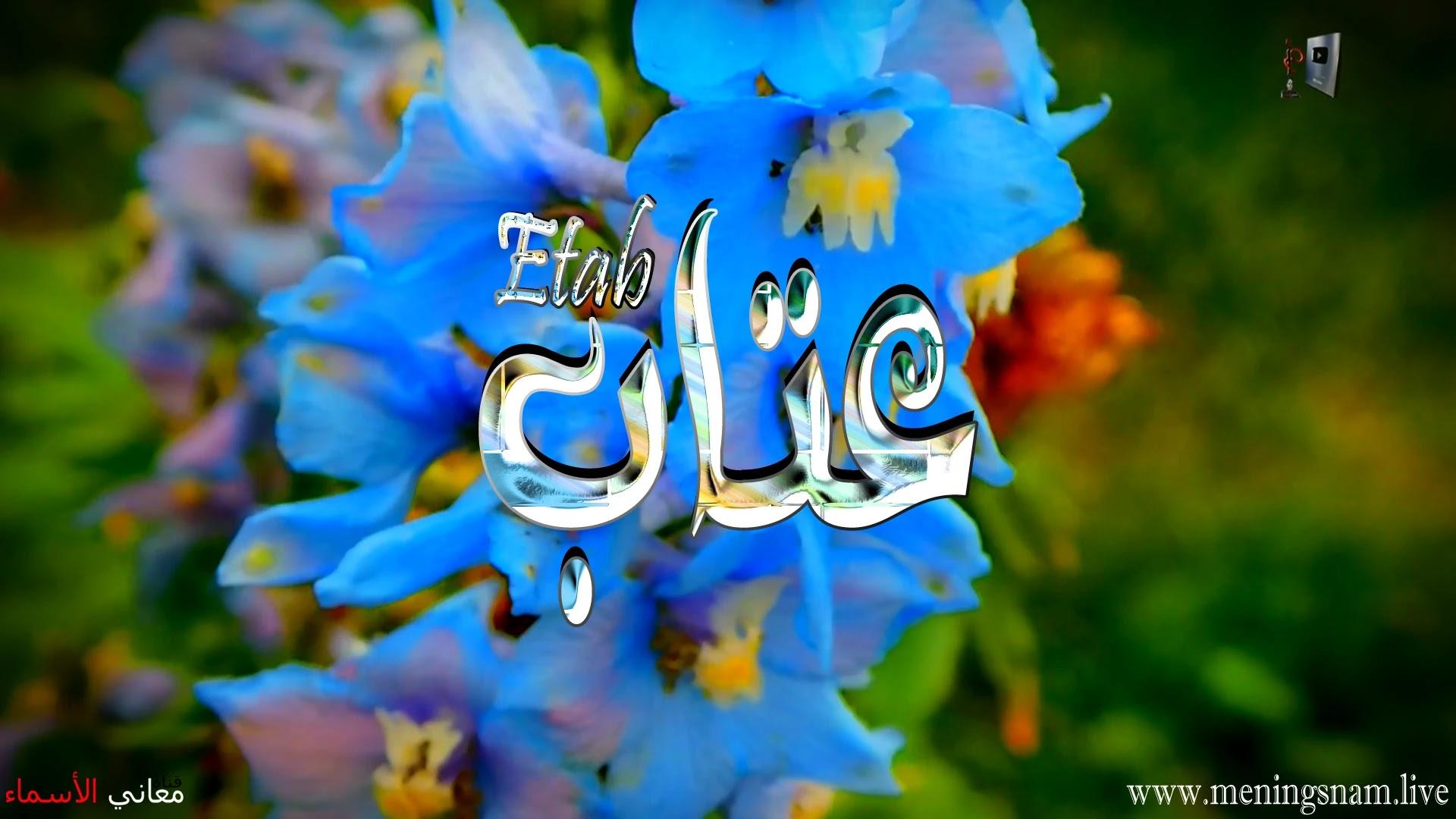معنى اسم عتاب وصفات حاملة هذا الاسم Etab