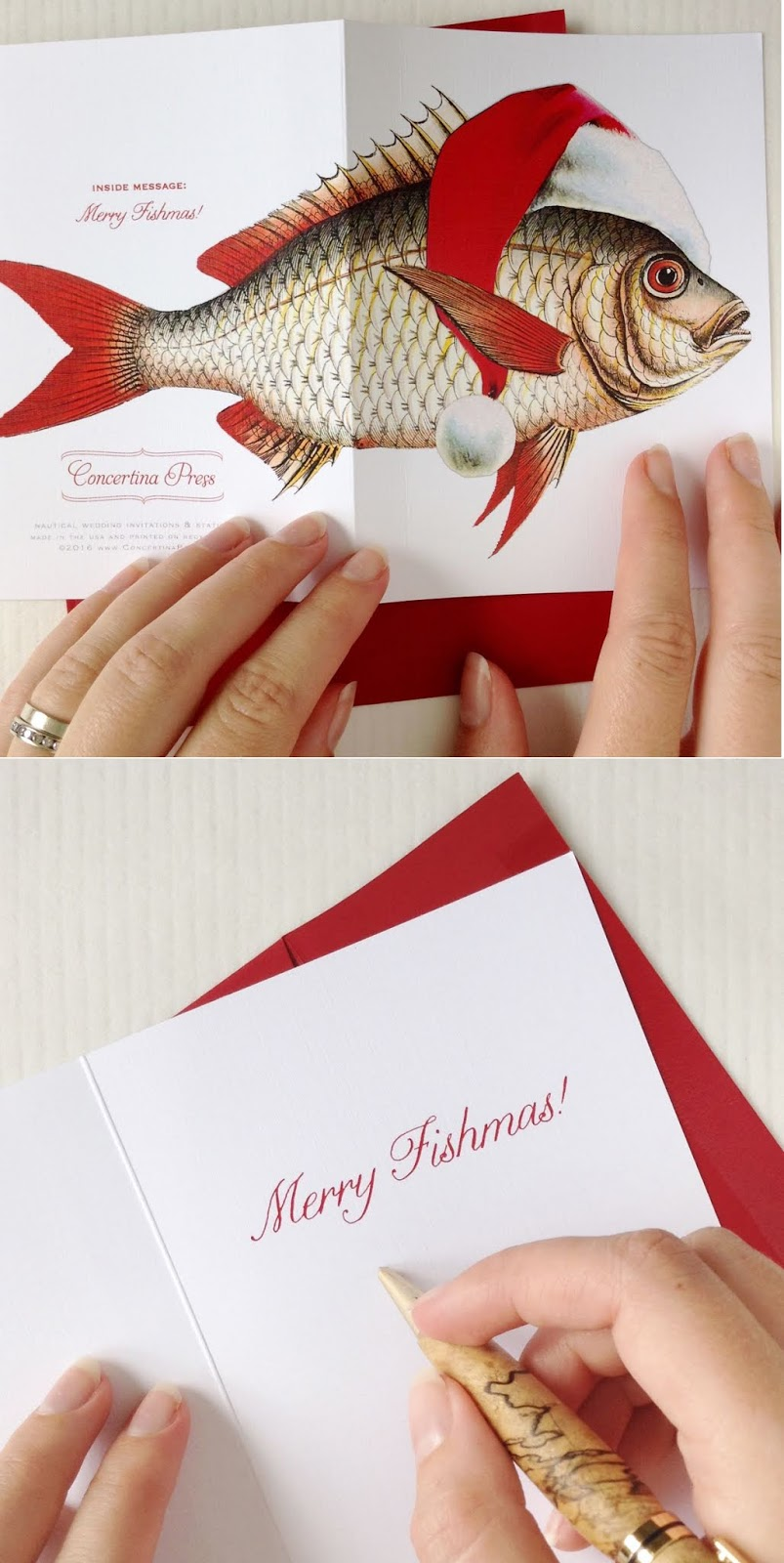 Funny Fish Christmas Cards Made in the USA