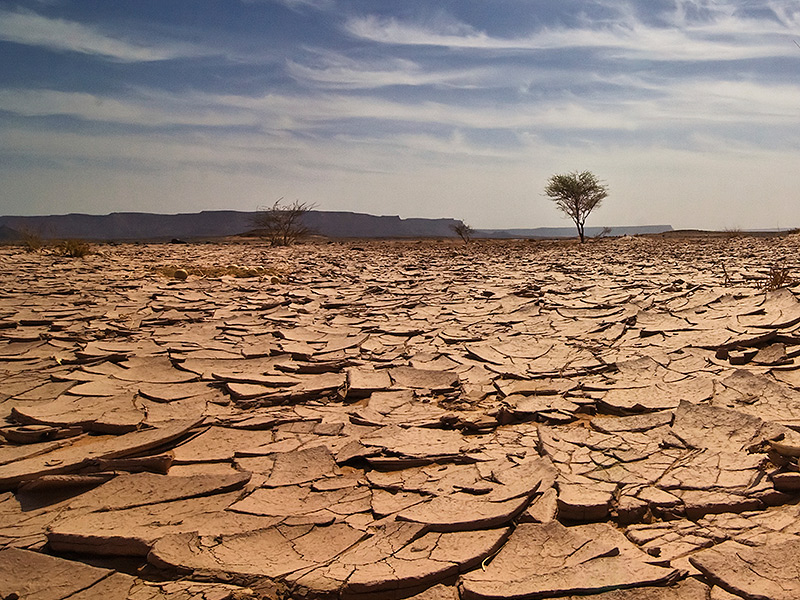 Dehydration : Lack Of Water In Our Body