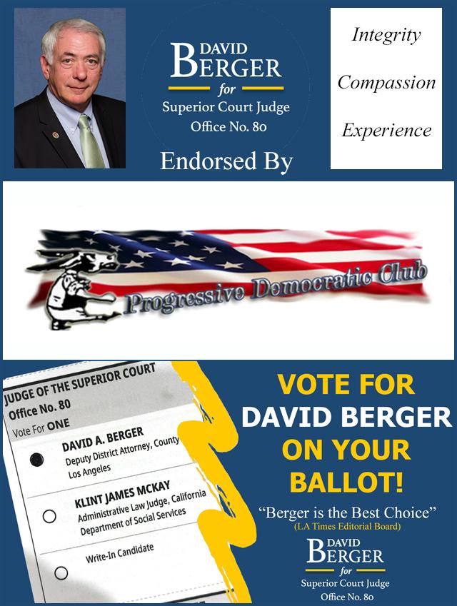 David Berger For Judge 2020