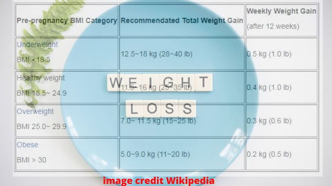 weight BMI during pregnancy
