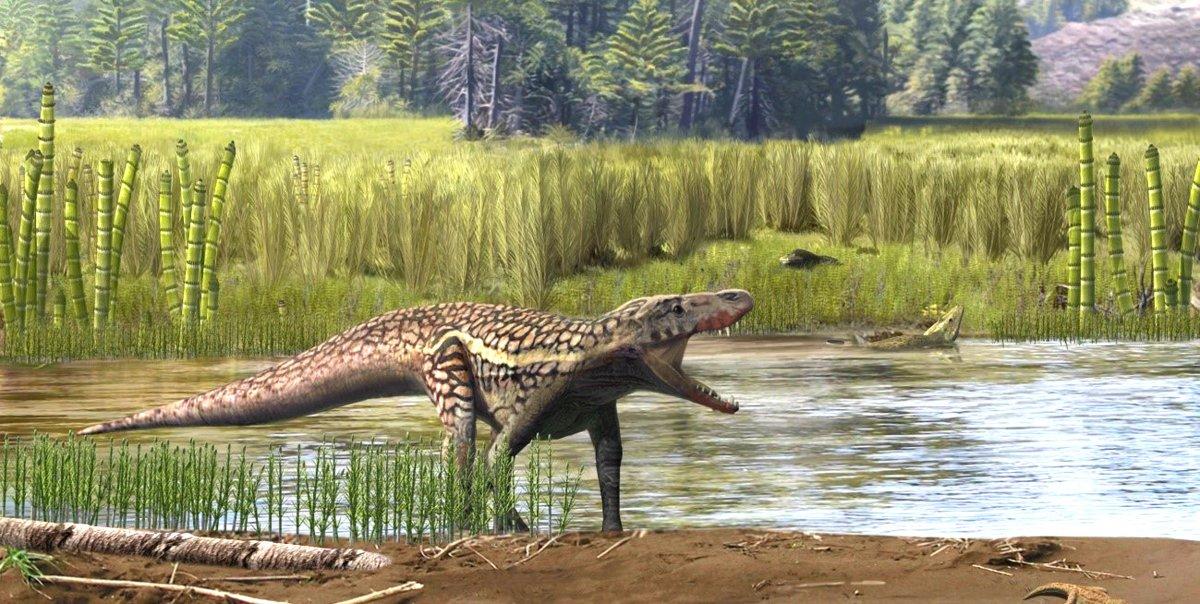 Hipòtesi de com seria un arcosaure