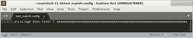 Initial exploit file