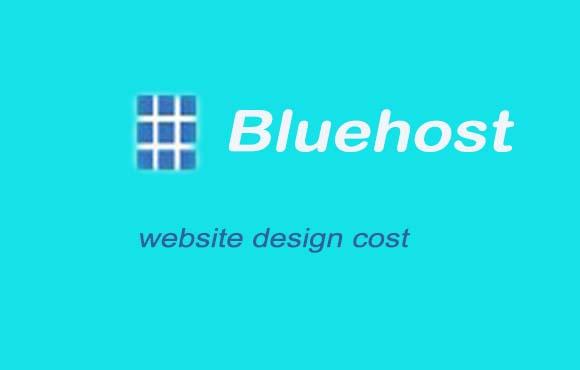 blue-website-design-cost