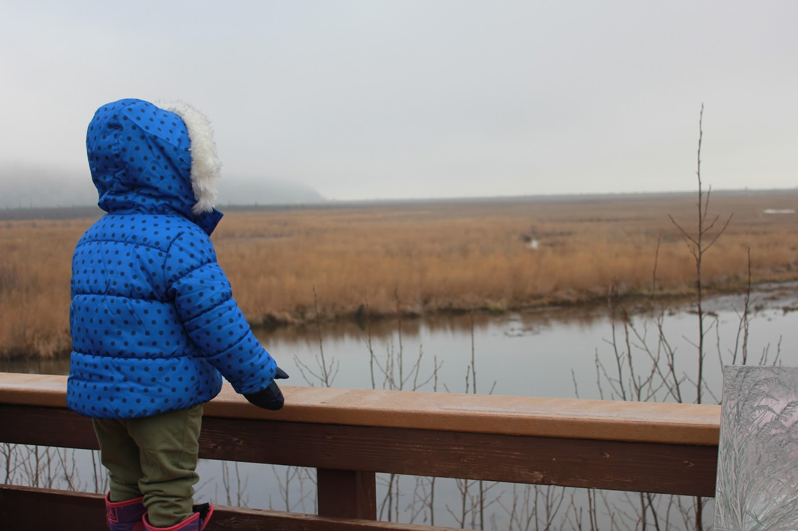 Toddler at Potter Marsh, Anchorage, Alaska