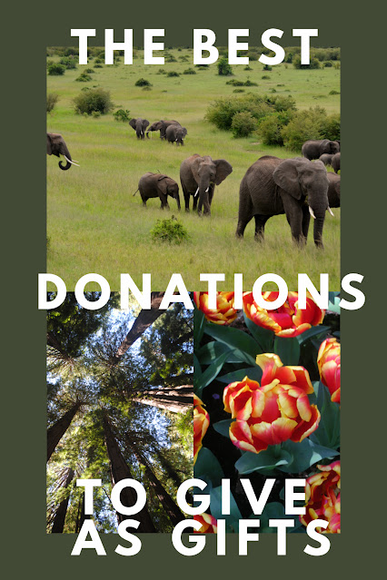 The Best Donations to Give as Gifts