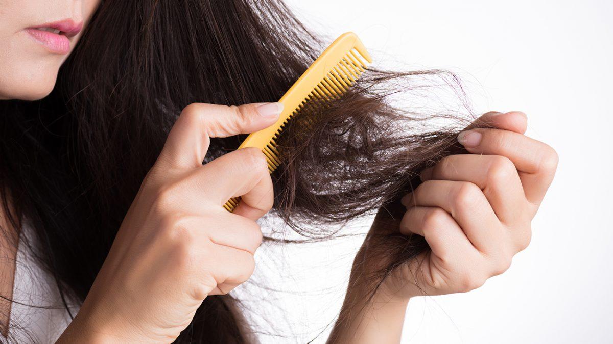 Cara Merawat Rambut yang Rusak Menjadi Indah Kembali