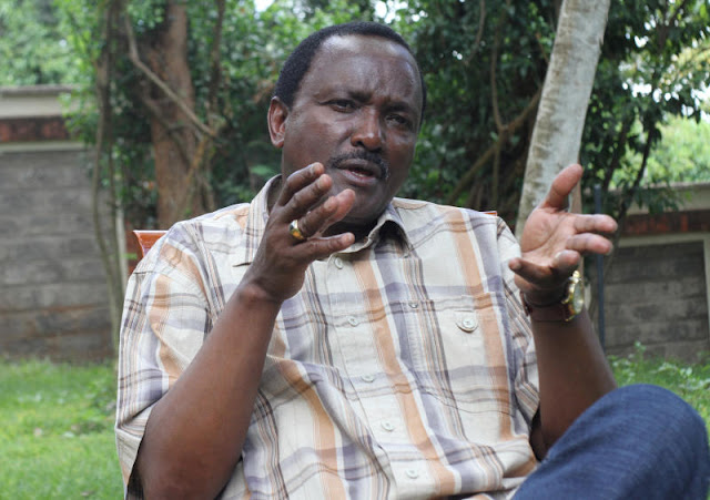 Kalonzo Trashes Retirement, Says 2022 Is Juicy