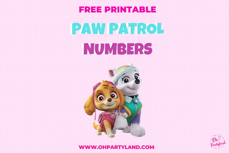 Free-printable -Paw-Patrol-Numbers-skye-everest