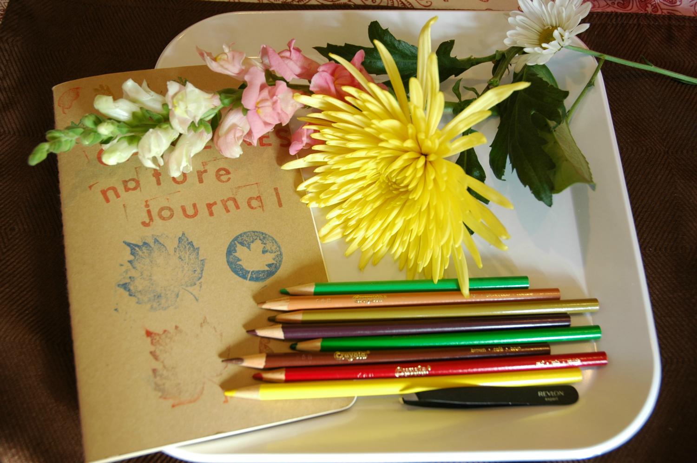 Spring Theme Weekly Home Preschool